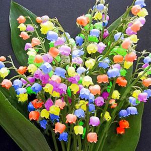 100 pcs Cloche Orchidée Graine Fleurs Convallaria Bonsaï ...