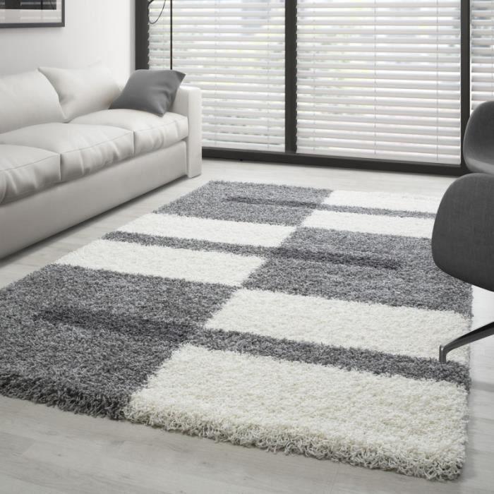 Tapis Gala Shaggy designe pile longue Gris-Blanc-Gris claire (160x230 cm)