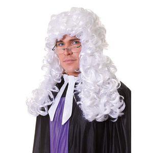ACCESSOIRE DÉGUISEMENT Perruque juge blanc bouclée de déguisements adulte