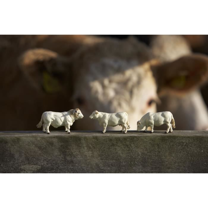 TOMY Lot de 4 vaches charolaises