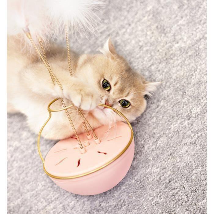 Jouet pour chat avec de lherbe /à chat et des plumes jouet chat cataire jouet chat plumes jouet /à lherbe /à Chat Jouet /à lherbe /à chat Coussin /à lherbe aux chats jouet herbe aux chats