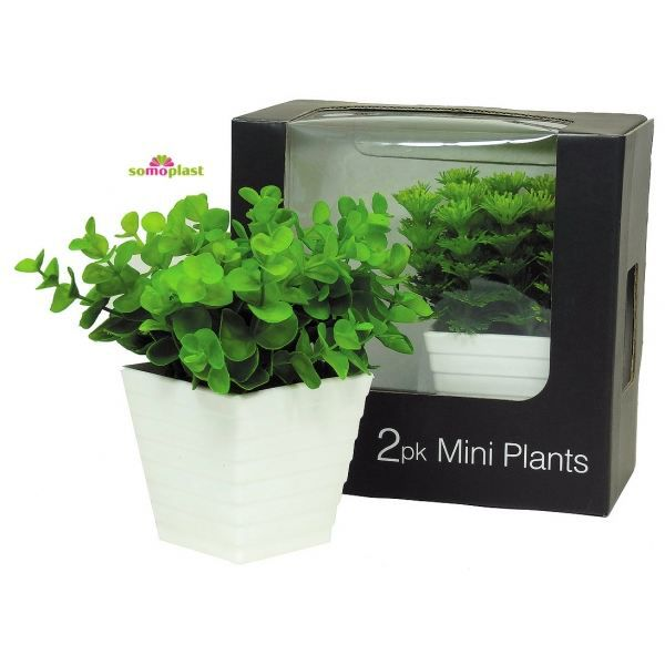 coffret de 2 plantes vertes artificielles d c achat. Black Bedroom Furniture Sets. Home Design Ideas