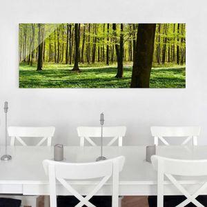 CADRE PHOTO 40x100 cm verre image - glade - croix panorama, pe