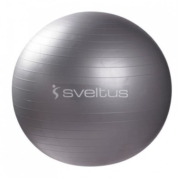 Gym Ball Gris (diamètre 65 cm).