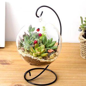 VASE - SOLIFLORE  Hydroponique Plante Fleurs Suspendus Vase En Verr