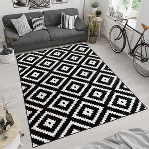 TAPIS TAPISO Maroko Tapis de Salon Moderne Marocain Noir
