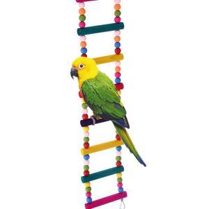BALANÇOIRE Drôle Balançoire 12 Échelles pour Perroquet Oiseau