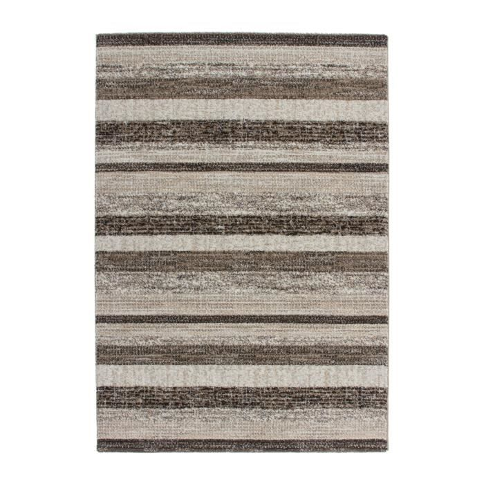 Tapis de salon moderne beige marron 120x170 cm achat for Salon moderne beige marron