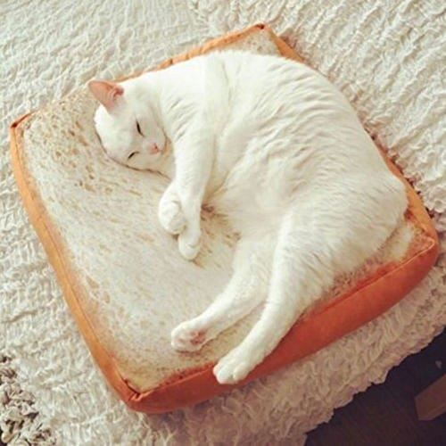 Matelas Animal Domestique, Toast Pain Doux Coussin de siège Pad Chats Chiens de Couchage Jouer allongé@M850