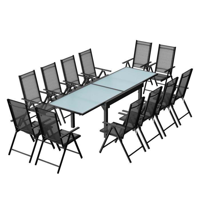 Table de jardin 12 personnes