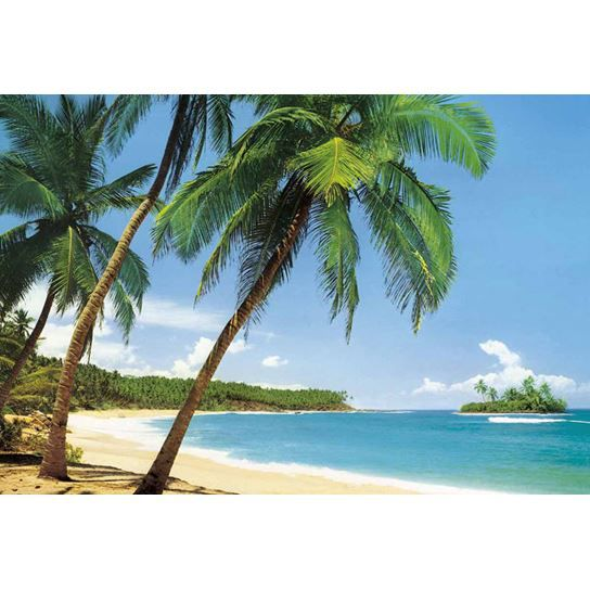 poster mural g ant ile tropicale 366 x 254 cm achat vente affiche poster soldes d s le. Black Bedroom Furniture Sets. Home Design Ideas