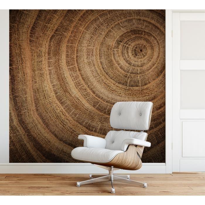 Papier peint finition satiné pré-encollé -Effet de texture bois coupé- L, 274 x H, 270 cm