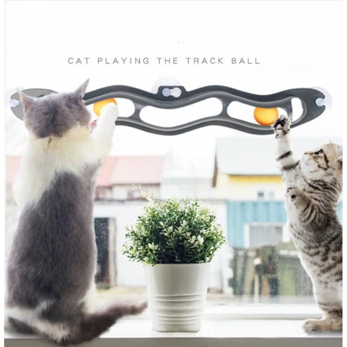 cat-ball-track-le-jouet-a-ventouse-incurvee-chat.jpg