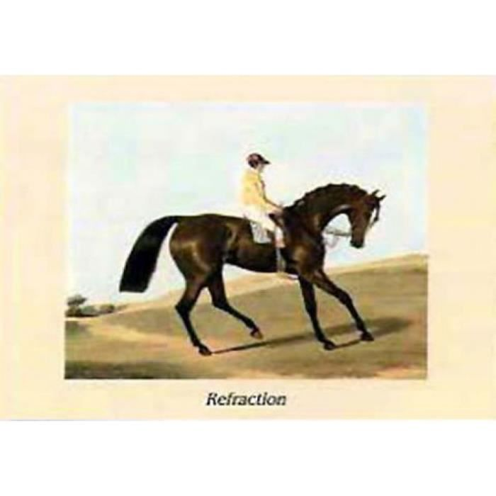 chevaux poster reproduction refraction 60 x 80 cm achat vente affiche cdiscount. Black Bedroom Furniture Sets. Home Design Ideas