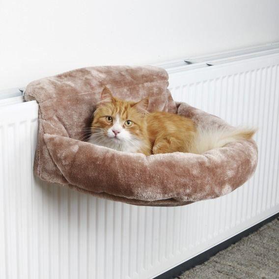 Lit confort chat brun pour radiateur