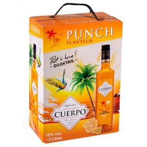 Punch-Cocktail préparé Punch Cuerpo 3L Bib 15°