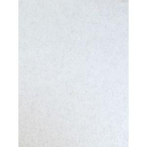 PAPIER PEINT FRESCO Rouleau fibre de verre blanc à peindre 25m