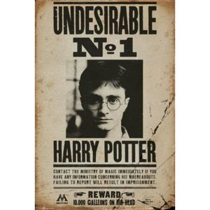 AFFICHE - POSTER Harry Potter Poster - Undesirable No 1 (91 x 61 cm