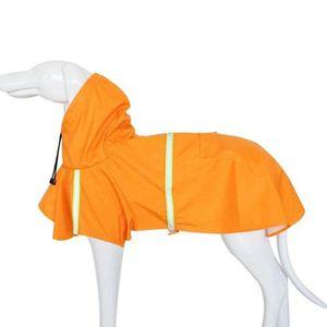 chiot Pet imperm/éable l/éger Teddy en plastique transparent poncho imperm/éable pour chien pour les chiens de petite ou moyenne taille zoonpark/® pour chien imperm/éable Poncho pour chien