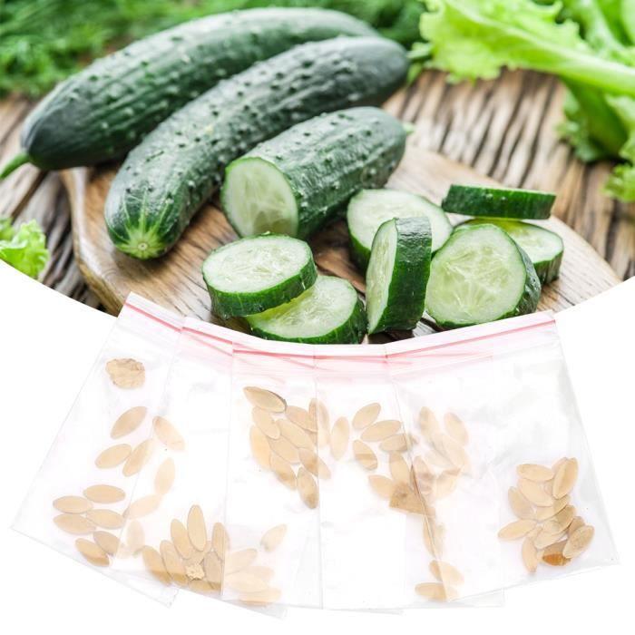 50pcs - sac graines de concombre bon goût vert en bonne santé végétal plante de jardin en croissance-LAT