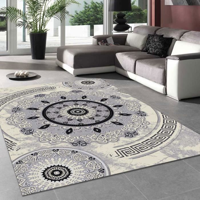 tapis salon new florida 4 gris 160x230 par unamourdetapis tapis moderne 160 x 230 cm gris. Black Bedroom Furniture Sets. Home Design Ideas