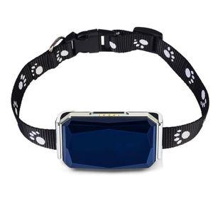 TRACAGE GPS  Collier De Chien Tracker GPS Chat Léger Etanche P