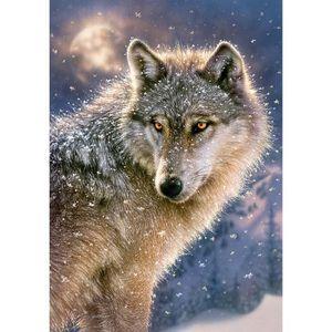 PUZZLE Puzzle 500 pièces : Loup solitaire aille Unique Co