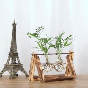 VASE - SOLIFLORE Creative hydroponique Vase usine Transparent Cadre
