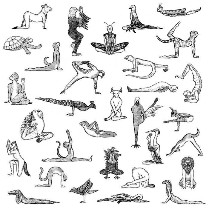 Poster Affiche Yoga Animaux Dessin Asanas Art Meditation 42cm x 42cm