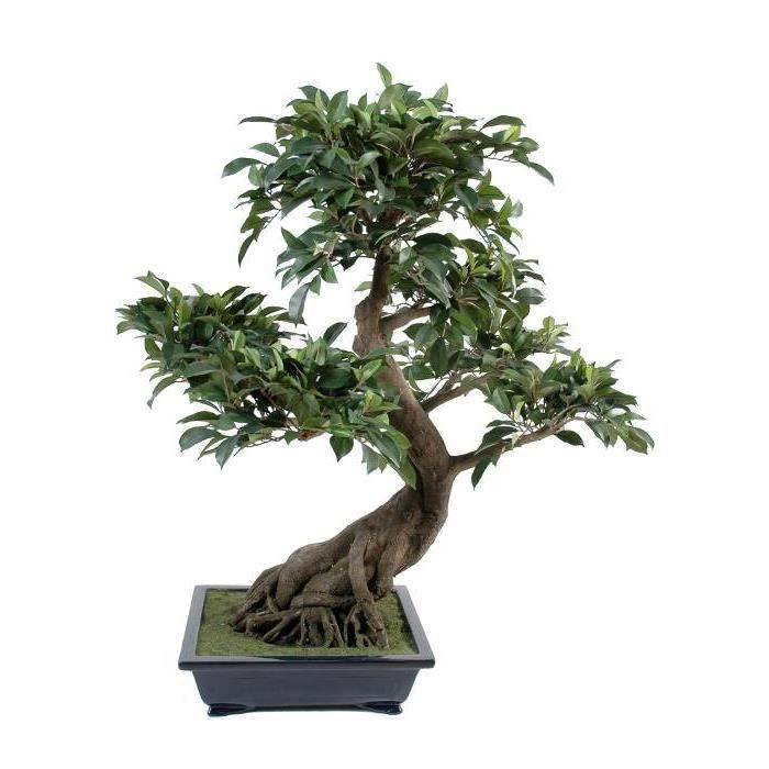 Bonsa ficus artificiel en coupe 78cm achat vente for Ficus artificiel