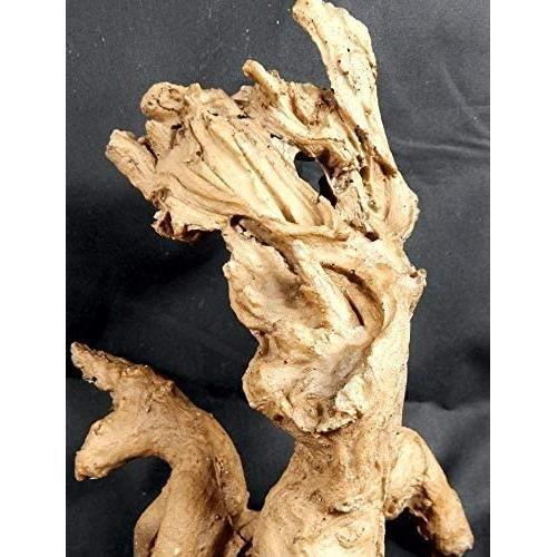 Racine de mangrove Racine de mangrove racines deacutecoration aquarium terrarium[181]