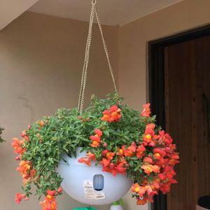 JARDINIÈRE - BAC A FLEUR Pot fleurs, Pot de fleurs decoration, Pot de fleur