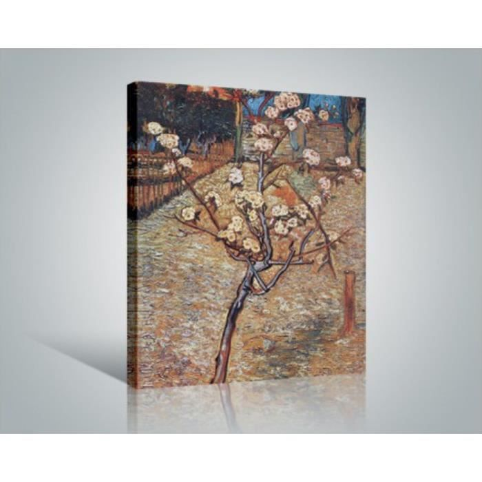 vincent van gogh poster reproduction sur toile tendue sur ch ssis prunier en fleurs 1888 50. Black Bedroom Furniture Sets. Home Design Ideas