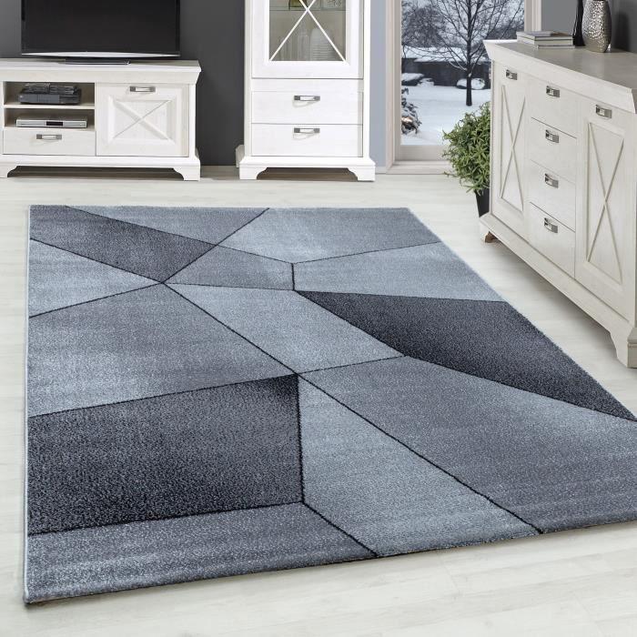 Design tapis de salon tapis à poils courts motif abstrait gris blanc tacheté [Gris, 160x230 cm]