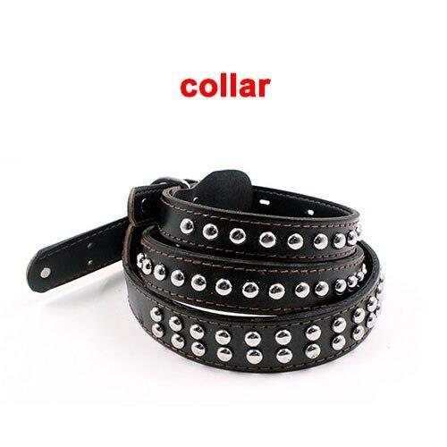 harnais animal -Laisse de chien en vrai cuir tressé noir - Gros chien robuste, collier pour ani...- Modèle: collar M - HOCWQSA13206