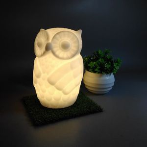 LAMPE A POSER Mignon Night Owl LED Nursery Chambre Decors Chambr