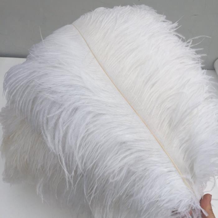 SurePromise Lot de 50 plumes de paon naturelles pour loisirs cr/éatifs