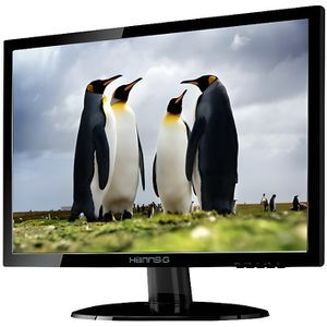 ECRAN ORDINATEUR HANNS.G HE195ANB - écran LED - 18.5