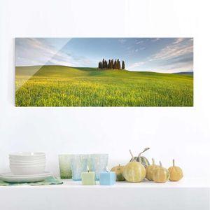 CADRE PHOTO 40x100 cm image en verre - champ vert en toscane -
