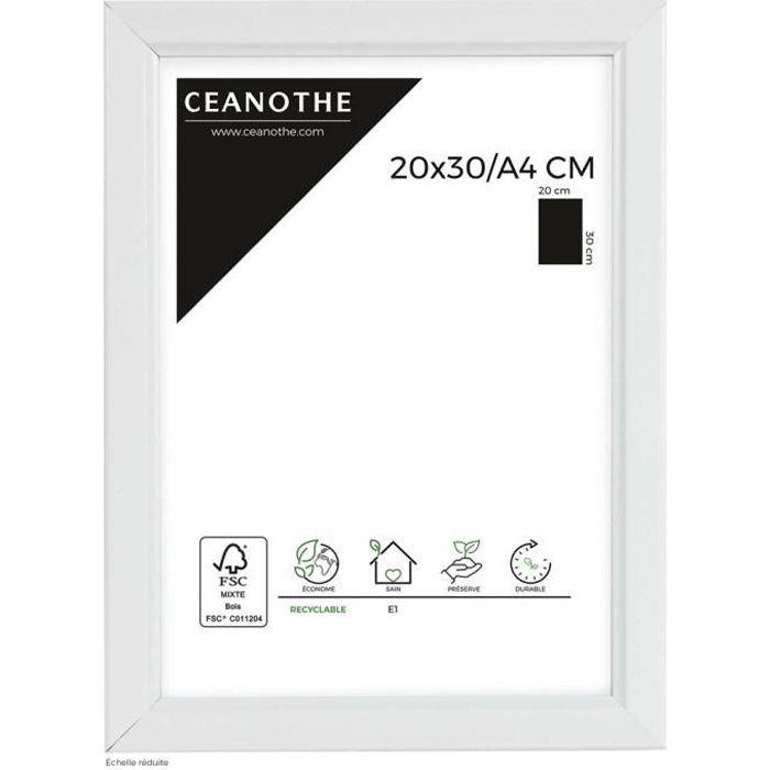 CADRE PHOTO Cadre photo Primo blanc 20x30 cm - Ceanothe, marqu