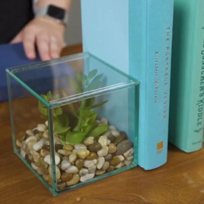 Serre-Livres Terrarium à Faire Soi-Même - Cadeau Maestro