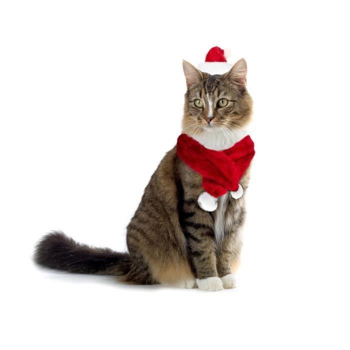 Bonnet De Noel Pour Chat 064234 Set bonet écharpe PÈRE NOËL pour chiens et chats de