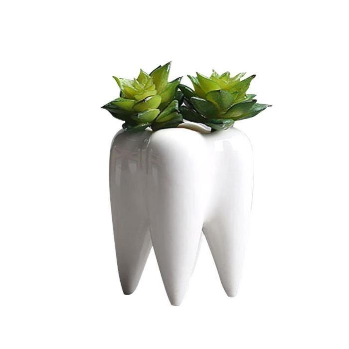 Mini Dent Bac à fleurs en céramique succulentes plantes Vase Fleur Planteur de bureau decor