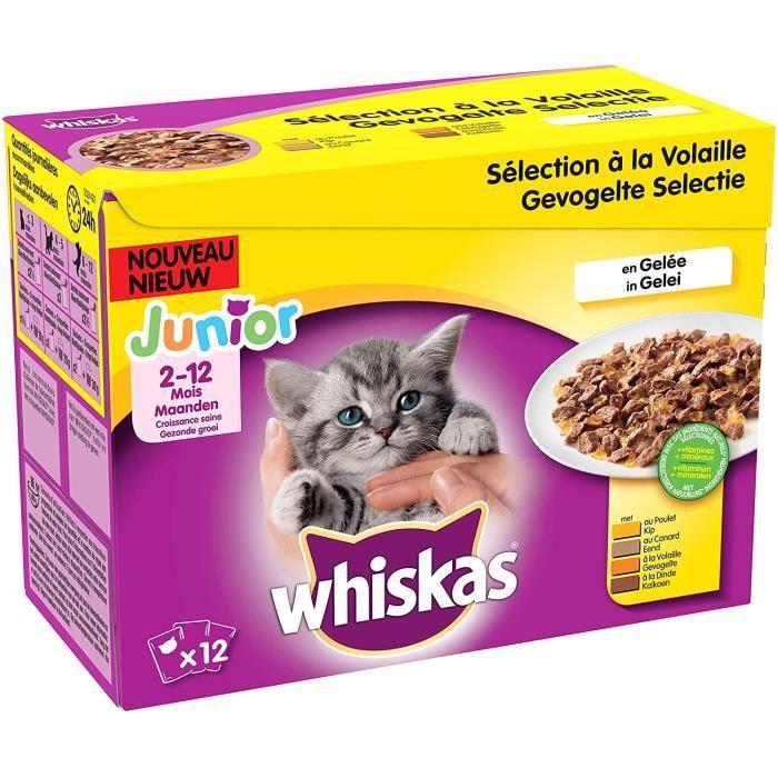 Nourriture pour chats Whiskas Junior - Sachets fraîcheur pour jeune chat et chaton (2-12 mois), sélection mixte en gelée 38660
