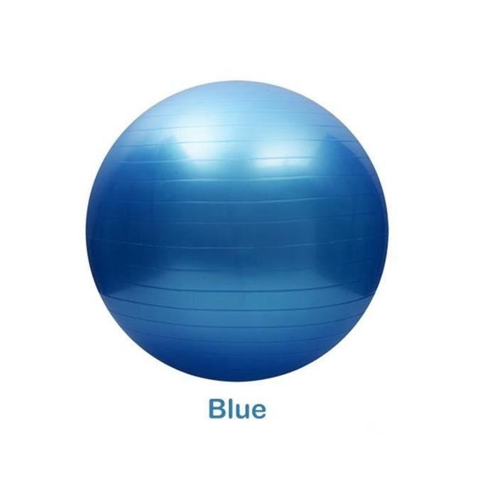 NEUFU Ballon de Gymnastique Avec Pompe Anti-éclatement épaissie PVC Fitness Balance Ball Bleu 55cm