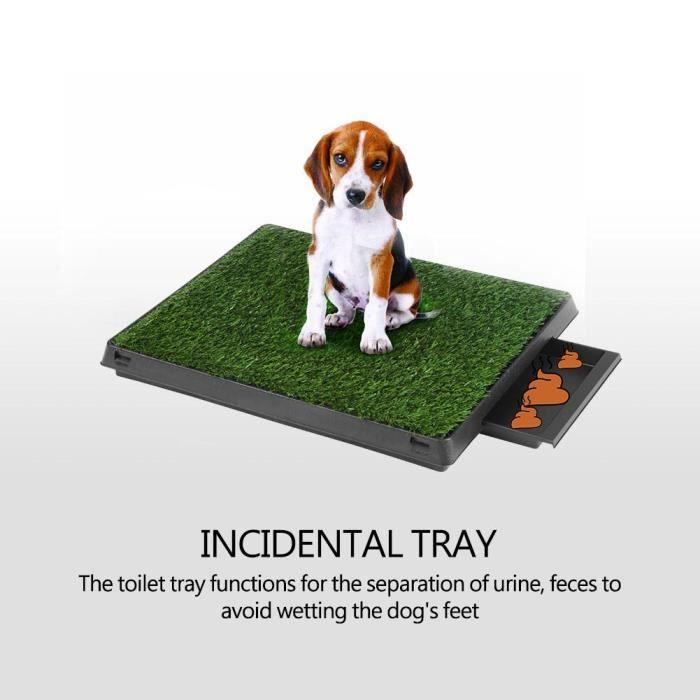 Tapis de propreté animaux compagnie chat chien chiot herbe plateau toilettes intérieures
