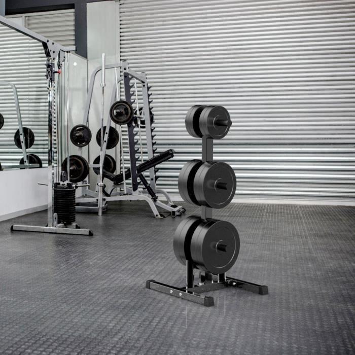 Yaheetech Support pour Haltère Disques Support pour Poids Max 400 kg Rack de Rangement pour Entraînement Musculation Fitness