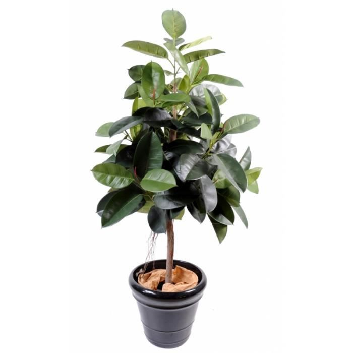 arbuste artificiel ficus elastica rubber plant tree h 150 achat vente fleur. Black Bedroom Furniture Sets. Home Design Ideas