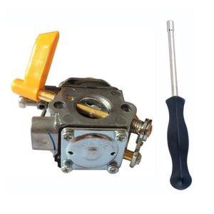 ALIMENTATION DE JARDIN C1U-H60 Carburateur + Outil de Réglage Pac Man /to