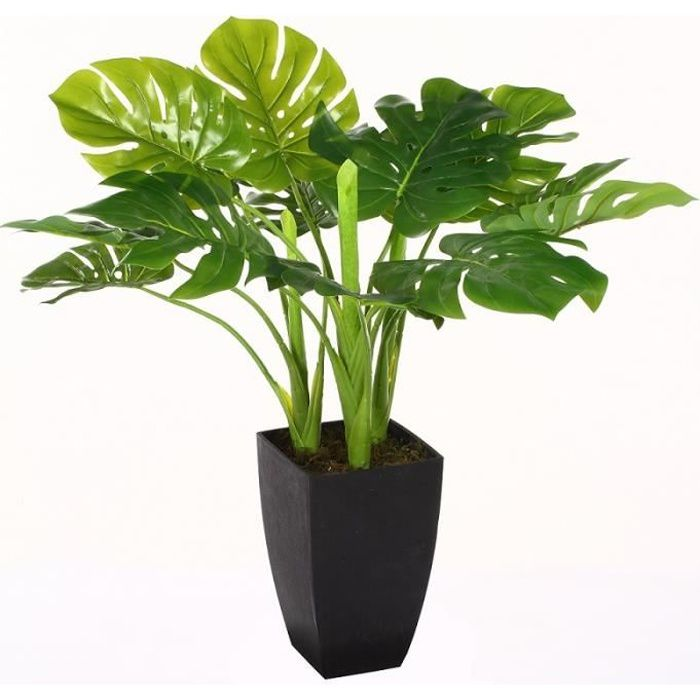 philodendron monstera artificiel 70cm vert anis achat vente fleur artificielle cdiscount. Black Bedroom Furniture Sets. Home Design Ideas
